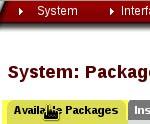pfSense - verfügbare Pakete