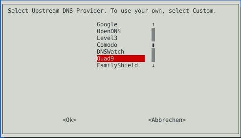 Pi-hole Installer DNS Provider