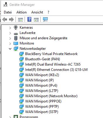 Windows 10 Gerätemanager - Netzwerk